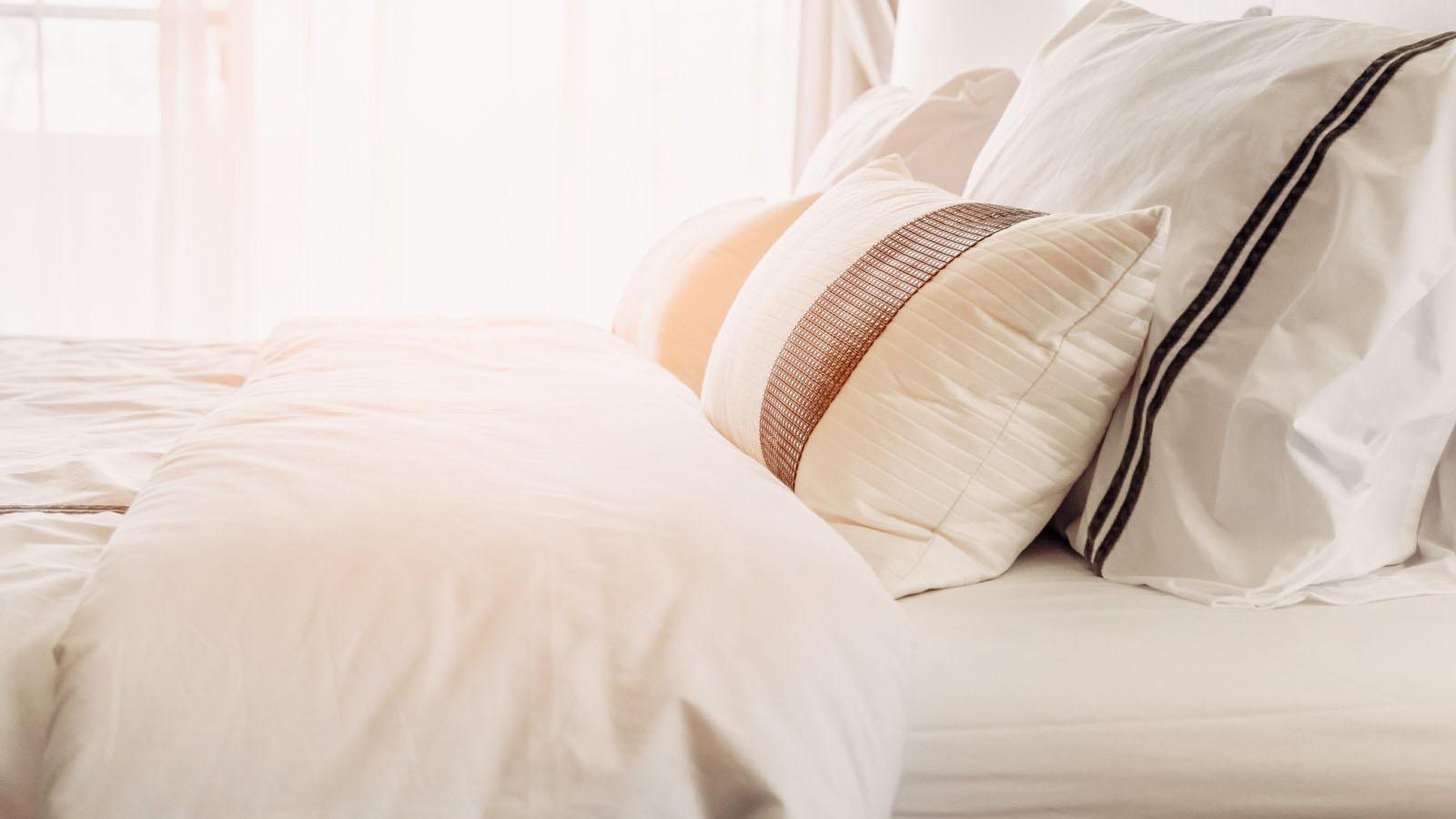 bed bug treatment testimonials bournemouth swindown taunton worthing bristol southampton dorset hampshire