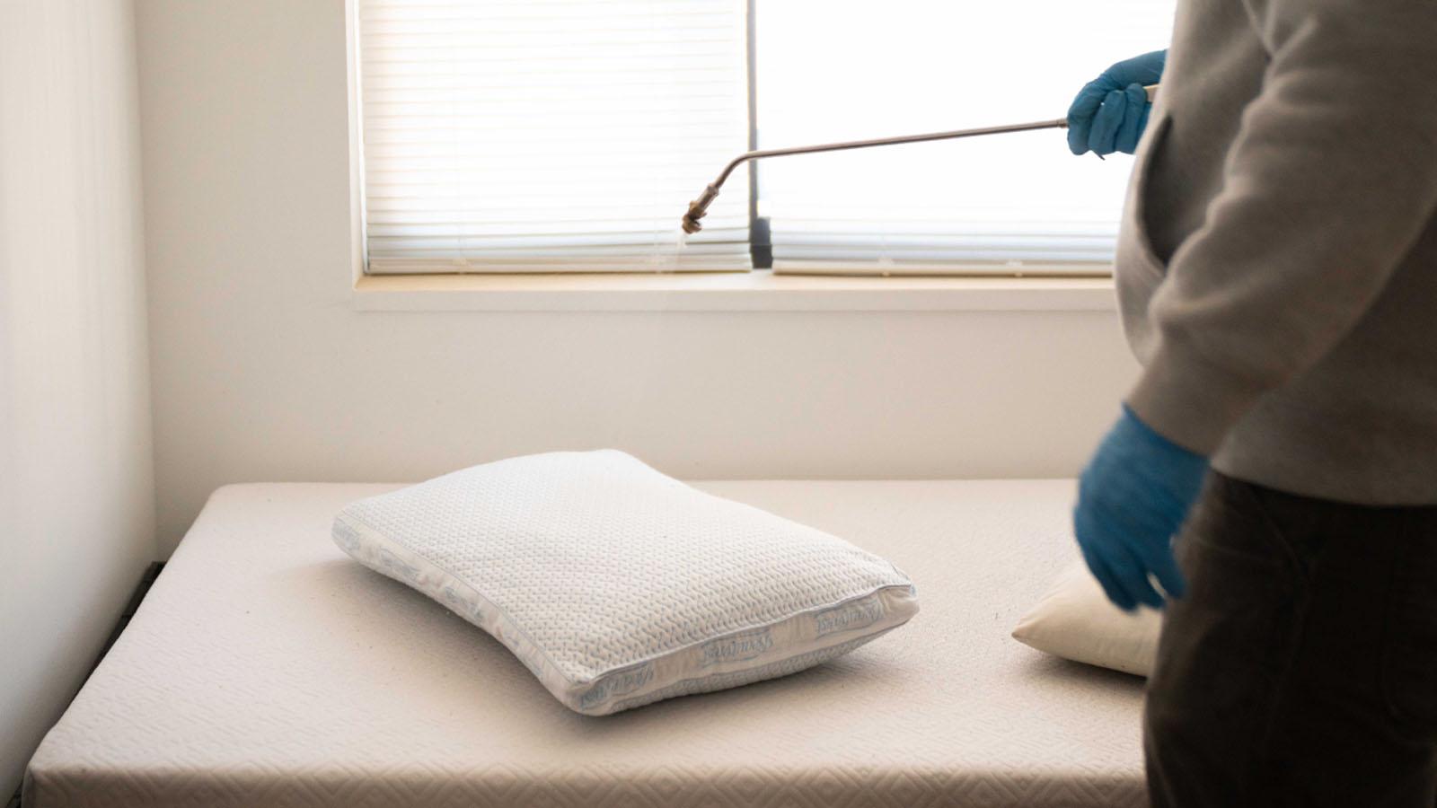 bed bug heat and spray treatments bournemouth swindown taunton worthing bristol southampton dorset hampshire