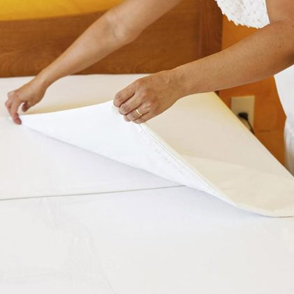 commercial bed bug treatment worthing